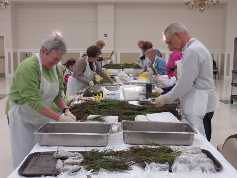 Photo for 55+ Retired and Senior Volunteer Program (RSVP)
